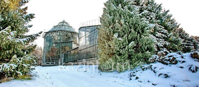 Главный ботанический сад Алматы не будут передавать акимату