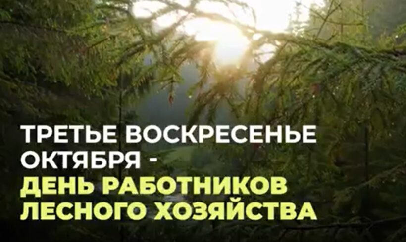 ГЛАВА МИНЭКОЛОГИИ ПОЗДРАВИЛ ЛЕСНИКОВ КАЗАХСТАНА С ПРОФЕССИОНАЛЬНЫМ ПРАЗДНИКОМ