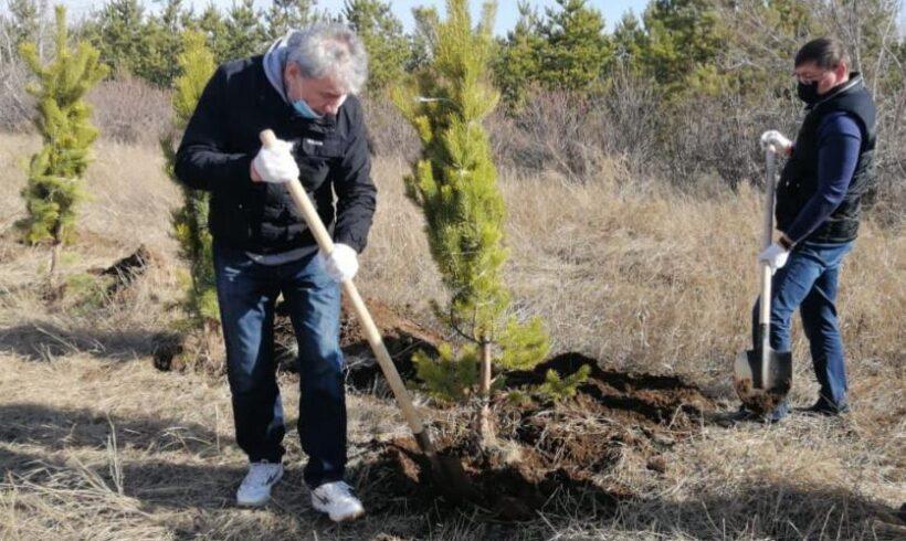Экология министрлігінің қызметкерлері Қазақстан Тәуелсіздігінің 30 жылдығына орай ағаш отырғызуға қатысты