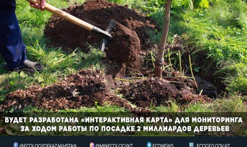 2 миллиард ағаш отырғызу мақсатында жасалып жатқан жұмысты бақылау үшін «интерактивті карта» әзірленеді