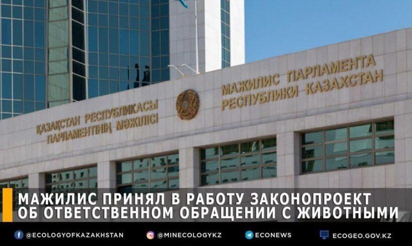 ҚР Парламентінің Мәжілісі жануарларға жауапкершілікпен қарау туралы заң жобасын жұмыс тобында қарауға алды